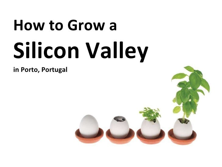How to Grow a Silicon Valley