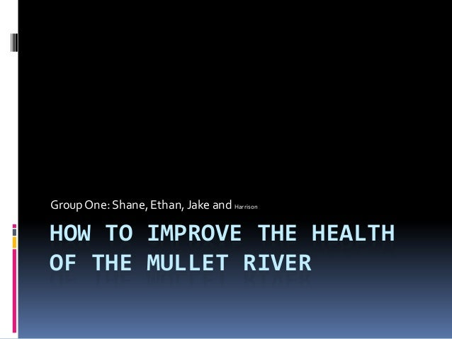 How to improve the health of the mullet