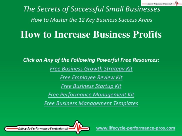 The Secrets of Successful Small Businesses<br />How to Master the 12 Key Business Success Areas<br />How to Increase Busin...