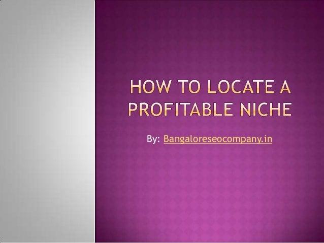 How to locate a profitable niche