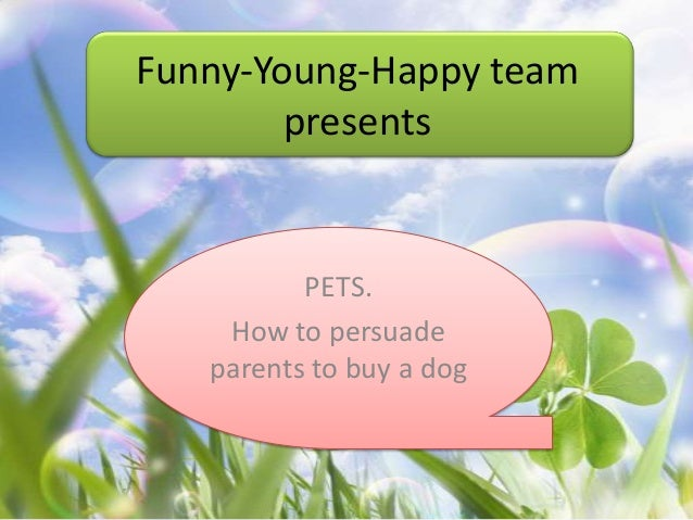 Persuade parents for a dog?