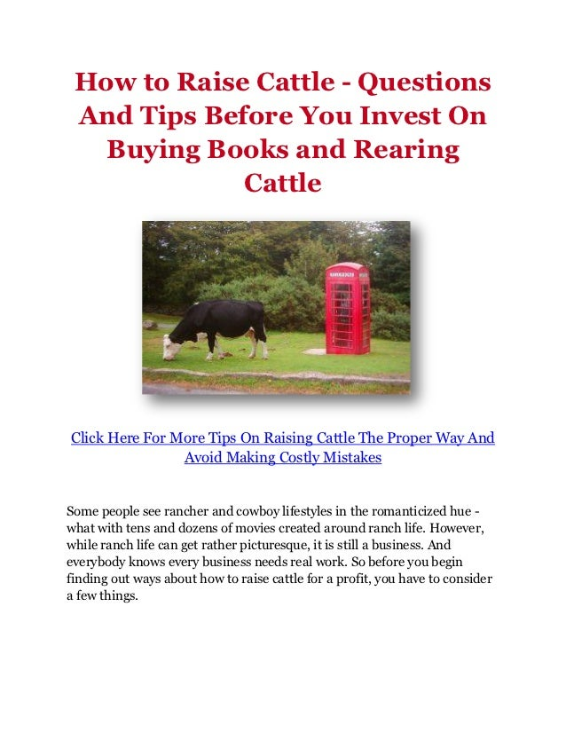How to Raise Cattle - Questions And Tips Before You Invest On   Buying Books and Rearing             CattleClick Here For ...