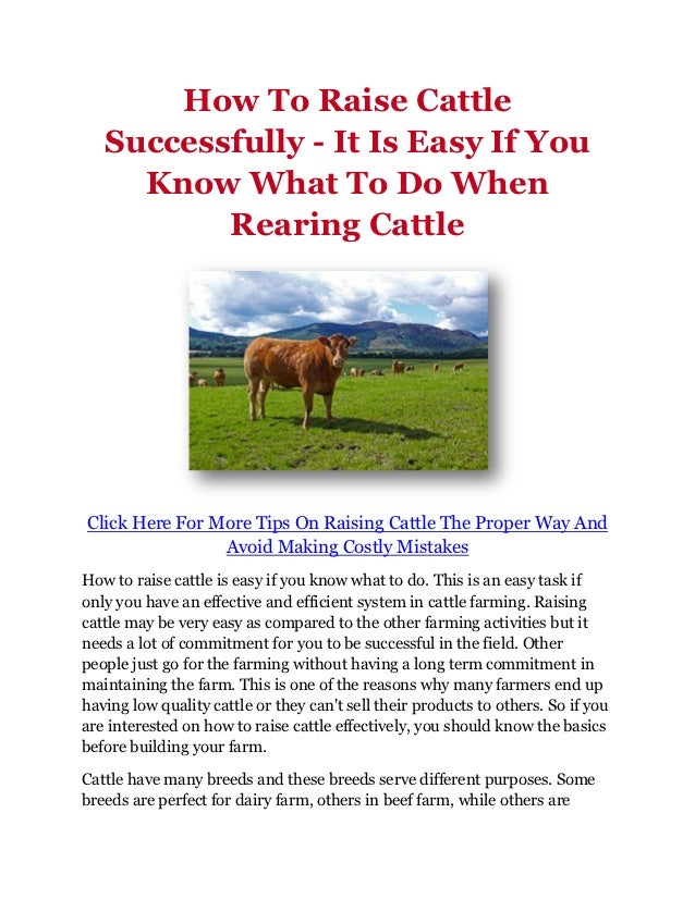 How To Raise Cattle   Successfully - It Is Easy If You     Know What To Do When          Rearing CattleClick Here For More...