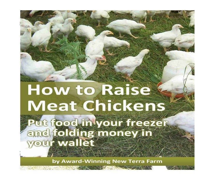 How to Raise Meat Chickens           ©2009 Scott   Kelland     Page 1 of 76                 Free Stuff from New Terra Farm