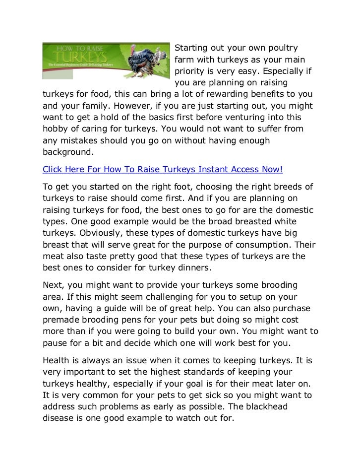 Starting out your own poultry                                 farm with turkeys as your main                              ...