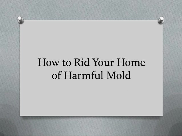 How To Get Rid Of Mold In Your Bathroom How To Get Rid Of Mold Bath How To And Tips At Here S
