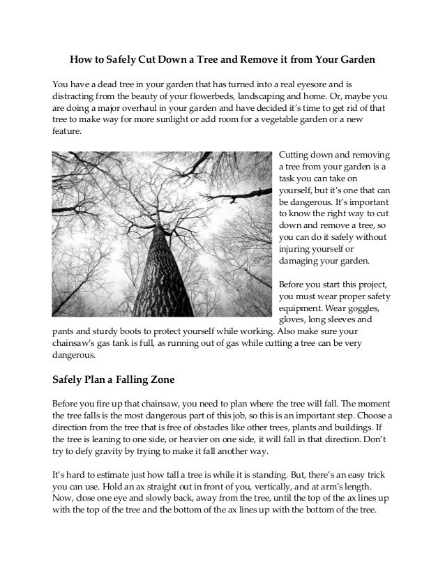 How to Safely Cut Down a Tree and Remove it from Your Garden You have a dead tree in your garden that has turned into a re...