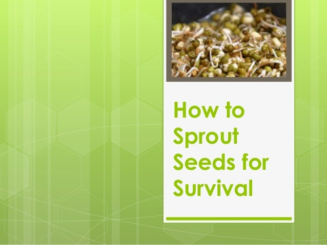 How to Sprout Seeds for Survival