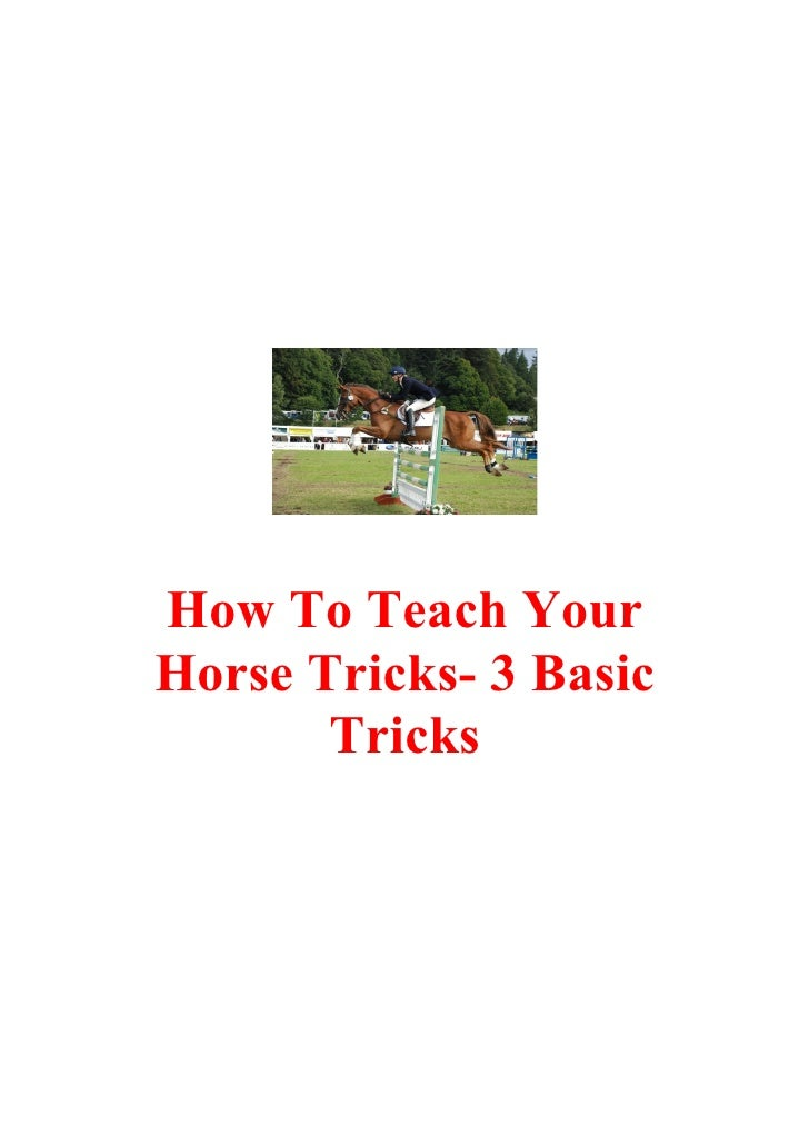 How To Teach Your Horse Tricks