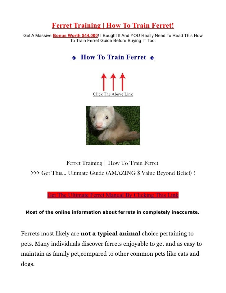 Ferret Training | How To Train Ferret! Get A Massive Bonus Worth $44.000! I Bought It And YOU Really Need To Read This How...