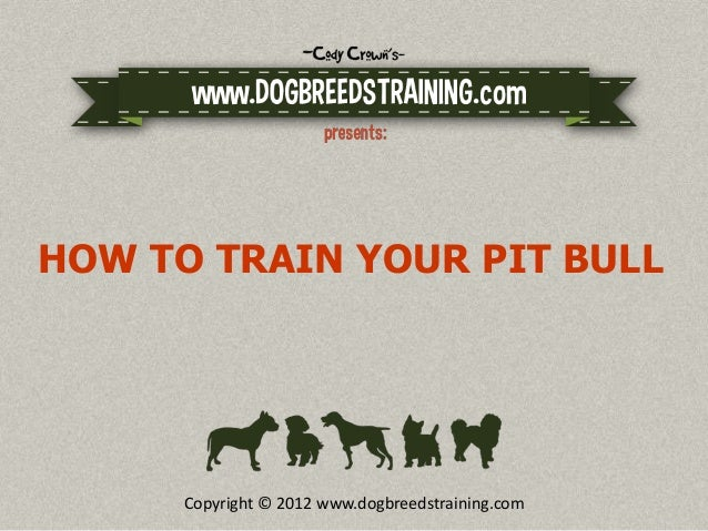 HOW TO TRAIN YOUR PIT BULL      Copyright © 2012 www.dogbreedstraining.com