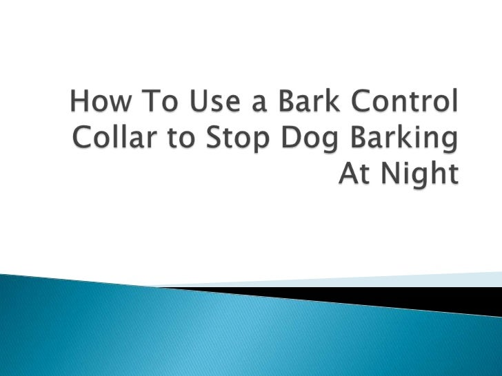 how to use a bark control collar to stop dog barking at night 1 728