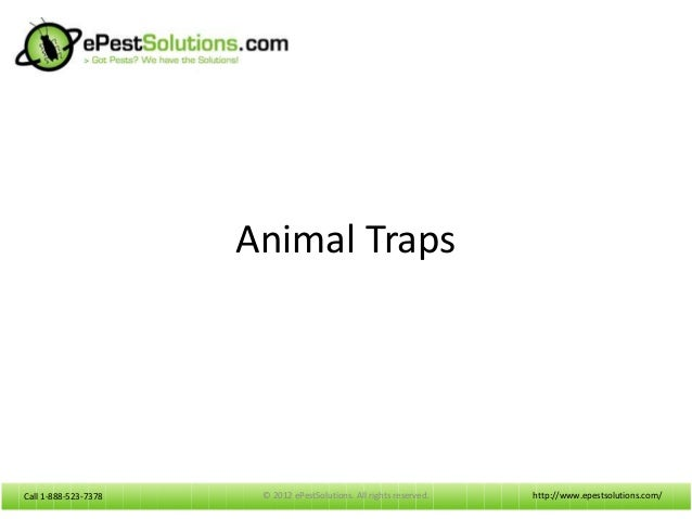 Call 1-888-523-7378Call 1-888-523-7378Animal Trapshttp://www.epestsolutions.com/© 2012 ePestSolutions. All rights reserved.