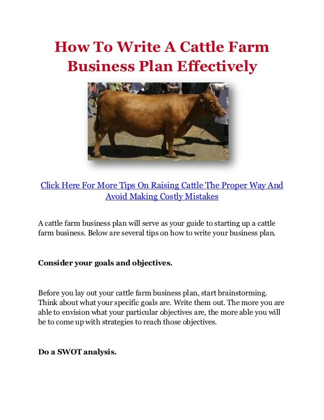 How To Write A Cattle Farm Business Plan Effectively