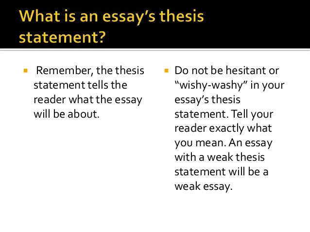 What Is Thesis In Essay Writing
