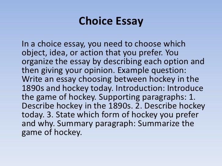 career choice essay