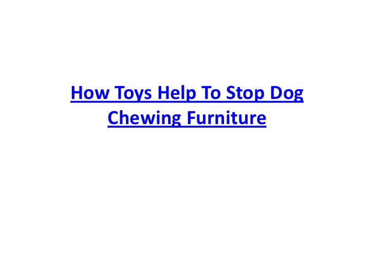 How Toys Help To Stop Dog Chewing Furniture<br />