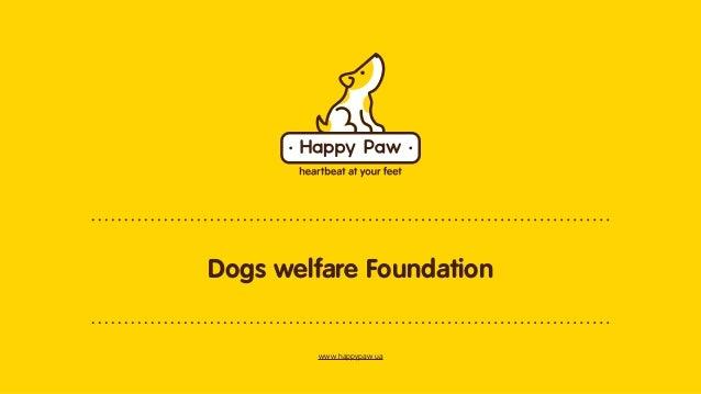 Dogs welfare Foundation  www.happypaw.ua