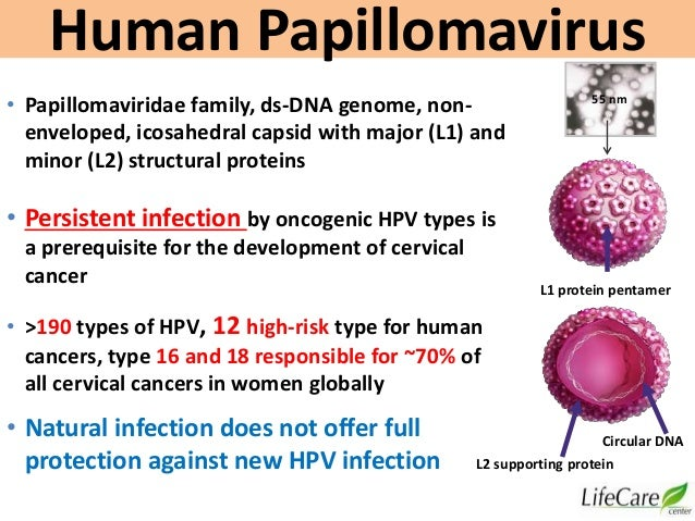 HPV Diseases More Than Cervical Cancer, Dr. Sharda Jain