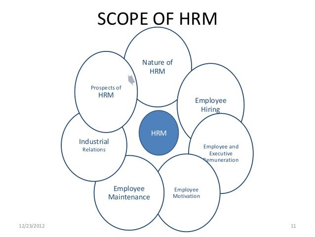 definition scope and importance of human resource development