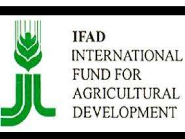 Objectives of the presentation provide an overview of IFAD • WHO ARE WE? • WHAT WE DO? • WHERE WE WORK?