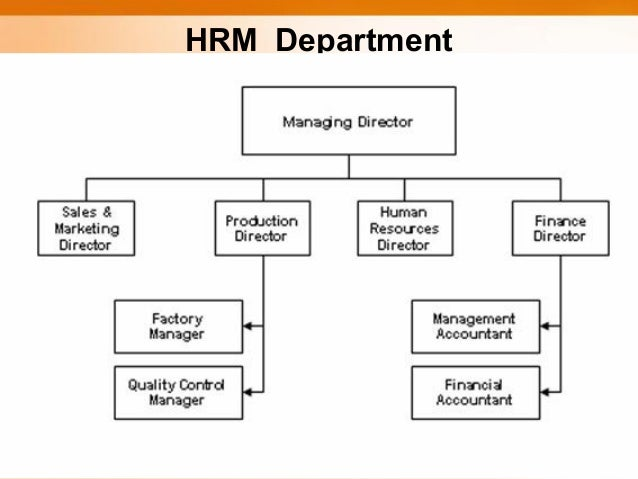 the hrm function environment the new director of human resources Strategic human resource management develop an environment in which and appreciate that to do this they must invest in human resources as well as new.