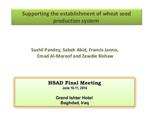 Hsad seed presentation