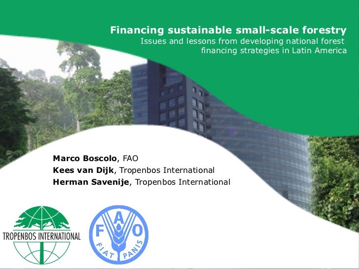 Financing sustainable small-scale forestry: Issues and lessons from developing national forest financing strategies in Latin America.