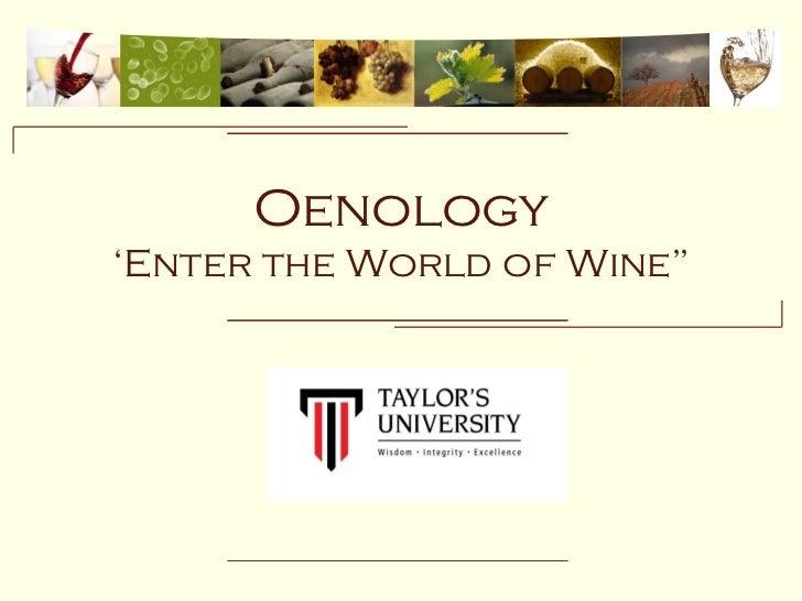 """Pwp conçu en 2009 par Remi Marty, merci d'avoir préservé mon travail.                  Oenology   'Enter the World of Wine"""""""