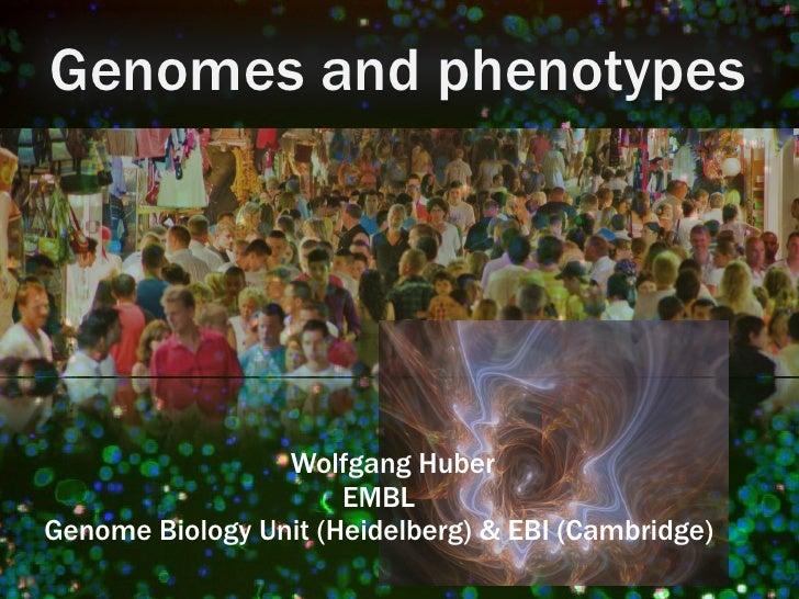 Genomes and phenotypes                 Wolfgang Huber                      EMBLGenome Biology Unit (Heidelberg) & EBI (Cam...