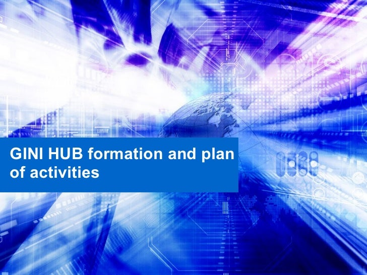 GINI HUB formation and plan of activities