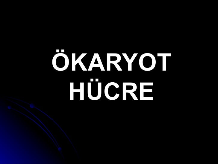 Hucre Okaryot Hucre Yapi 2.1