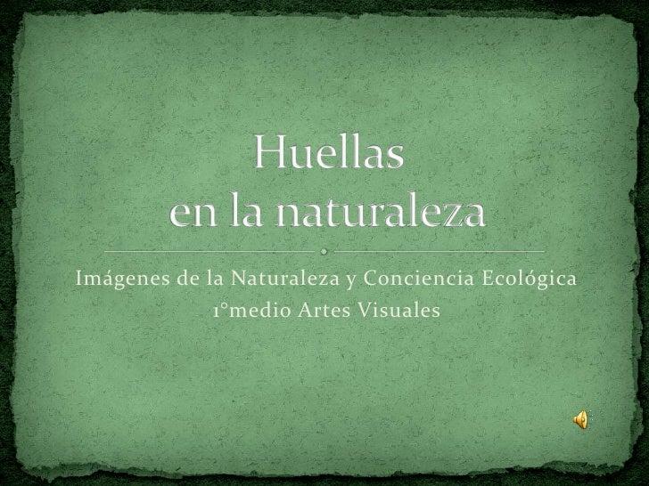 Imágenes de la Naturaleza y Conciencia Ecológica              1°medio Artes Visuales