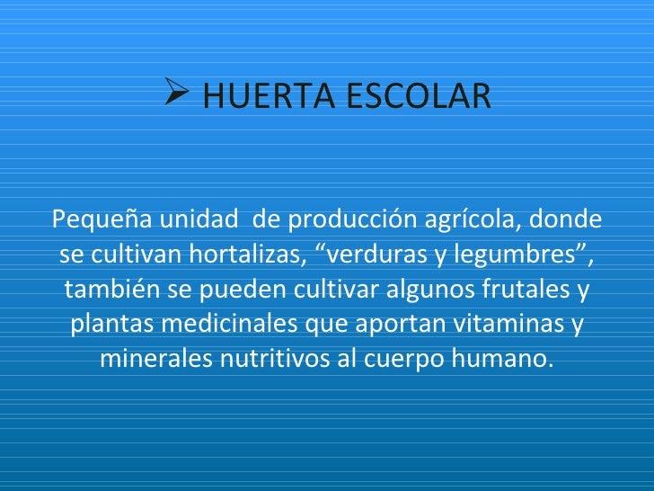 Huerta Escolar Sena