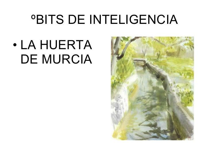 ºBITS DE INTELIGENCIA <ul><li>LA HUERTA DE MURCIA </li></ul>
