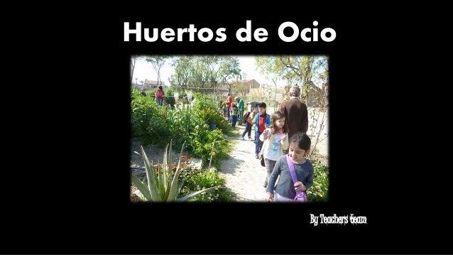 Huertos de Ocio By Teachers team