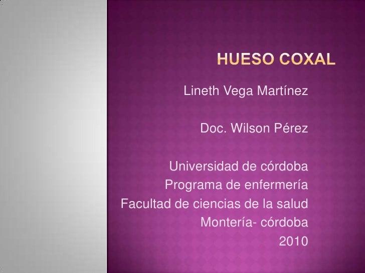 HUESO COXAL<br />Lineth Vega Martínez<br />Doc. Wilson Pérez<br />Universidad de córdoba<br />Programa de enfermería <br /...