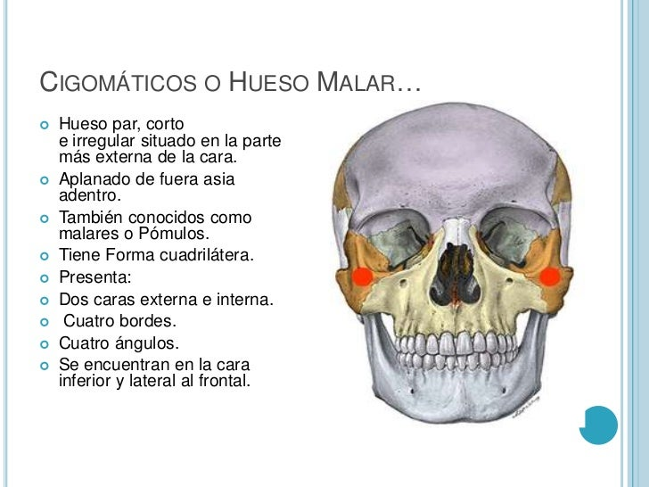El masaje de la osteocondrosis del departamento lumbar del vídeo