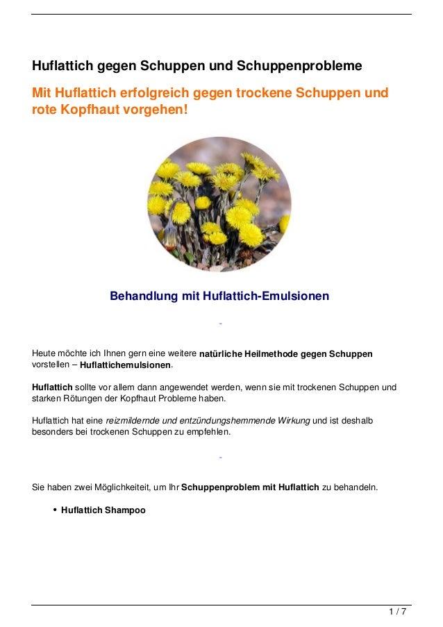 Huflattich gegen Schuppen und SchuppenproblemeMit Huflattich erfolgreich gegen trockene Schuppen undrote Kopfhaut vorgehen...