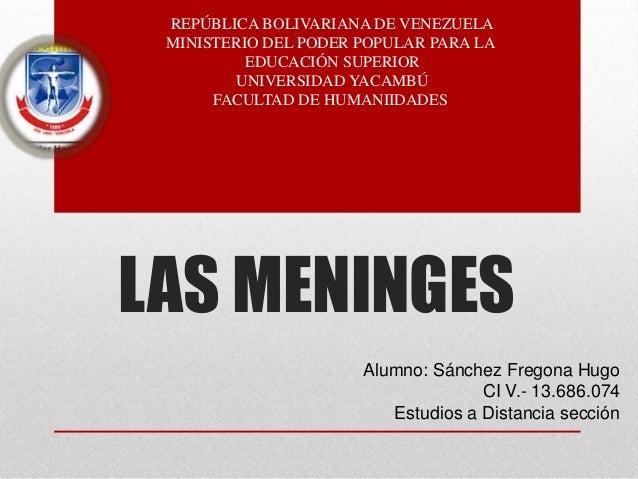 LAS MENINGES Alumno: Sánchez Fregona Hugo CI V.- 13.686.074 Estudios a Distancia sección REPÚBLICA BOLIVARIANA DE VENEZUEL...