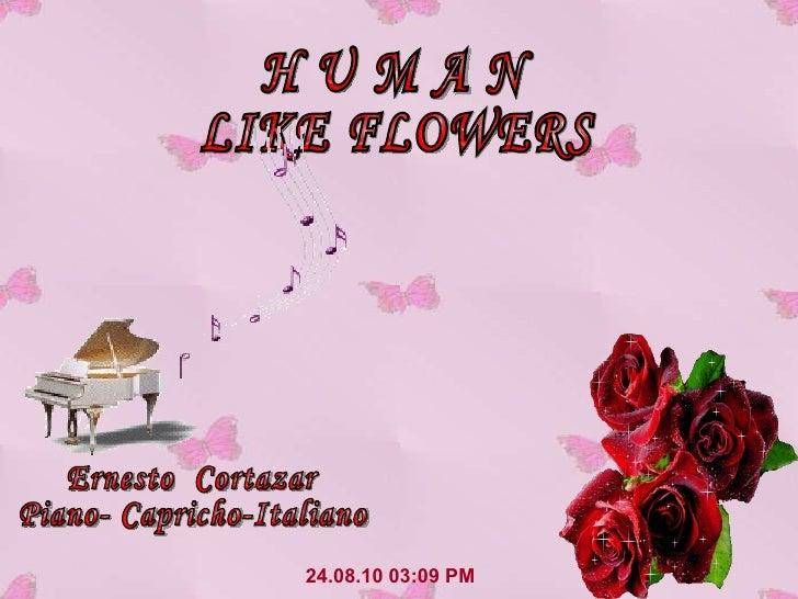 24.08.10   03:09 PM H U M A N LIKE FLOWERS Ernesto  Cortazar Piano- Capricho-Italiano