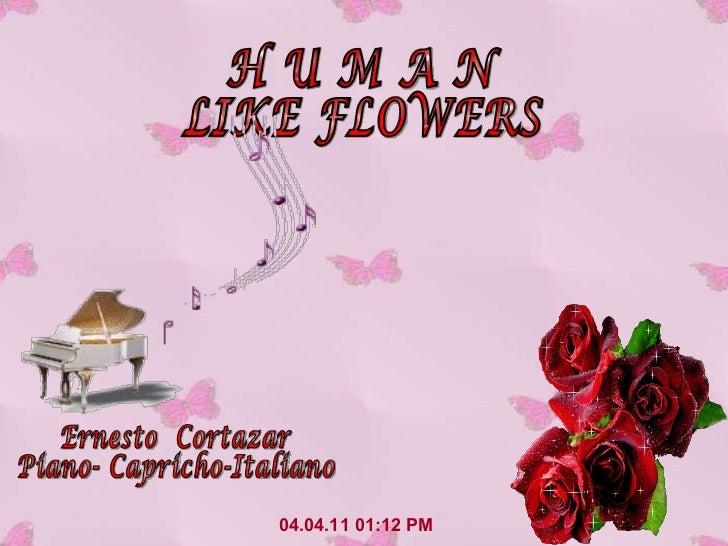 04.04.11   01:12 PM H U M A N LIKE FLOWERS Ernesto  Cortazar Piano- Capricho-Italiano