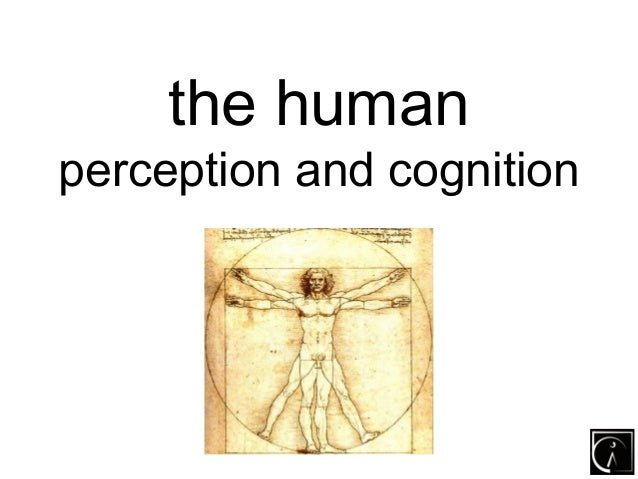 the humanperception and cognition