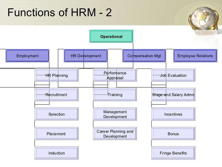 Hrm 531 Week 4 Career Development Plan Part III Performance and Career Management