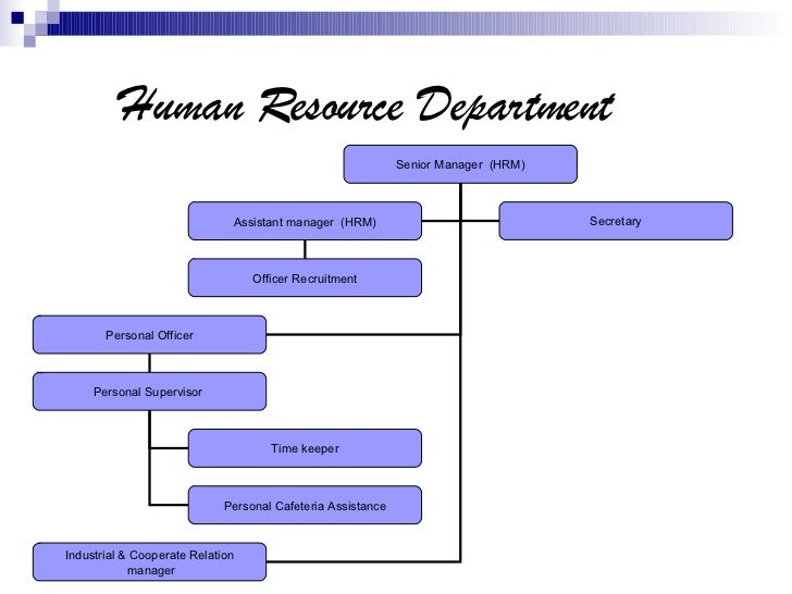 essay questions on human resource planning Human resource management final exam sample questions human resource management final exam sample questions are careerworkbooks and career planning.