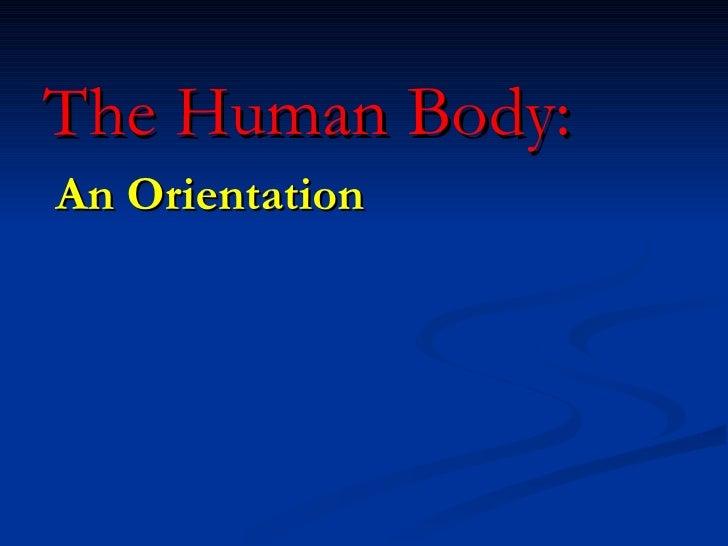 The Human Body: An Orientation
