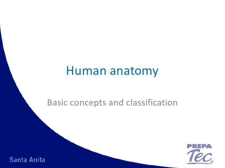 Human anatomy<br />Basic concepts and classification<br />