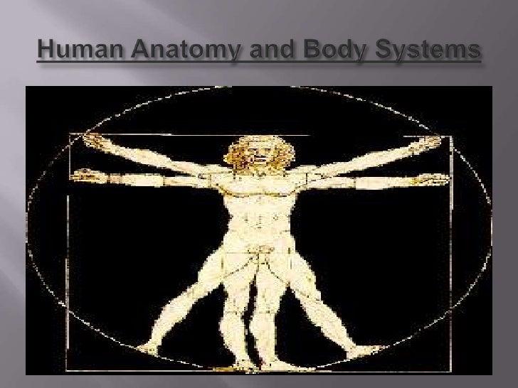 Human Anatomy And Body Systems by Sandra Landinguin