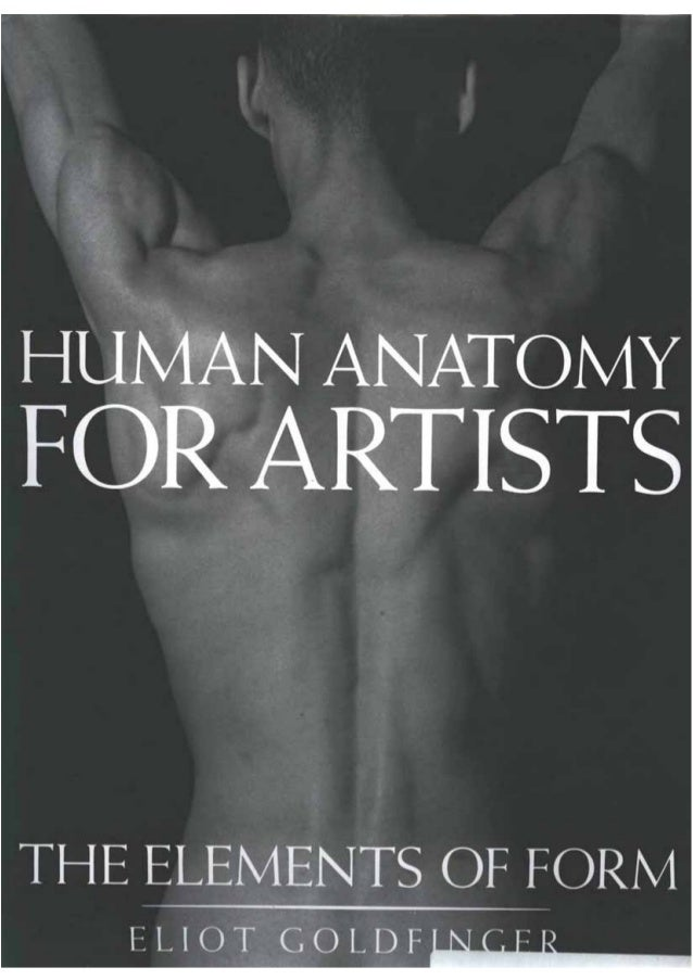 Human anatomy for artists by blixer
