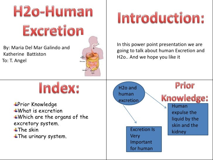 H2o-Human Excretion<br />Introduction:<br />In this power point presentation we are going to talk about human Excretion an...
